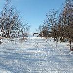 Przymiarki Zima
